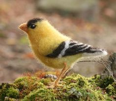 Needle Felted Birds | Needle felted Goldfinch, life sized bird