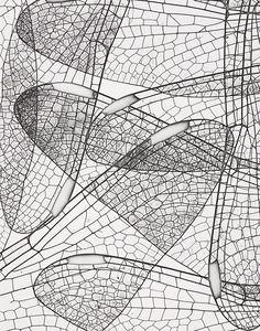 PATTERNITY: A way of seeing - A way of being | studio@patternity.org | +44 (0)20 7613 5867