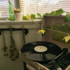 I think a great invention is the record player. I love listening to music on there. Plant Aesthetic, Aesthetic Room Decor, Aesthetic Photo, Aesthetic Pictures, Sage Green Wallpaper, Mint Green Aesthetic, Record Players, Aesthetic Vintage, Pretty Green