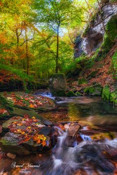 A good sense of autumn by Saeed Younesi🌟 / Autumn Photography, Water Photography, Landscape Photography, Beautiful Waterfalls, Beautiful Landscapes, Beautiful Places, Beautiful Pictures, Autumn Scenes, Nature Scenes