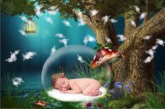 Newborn digital backdrop  background  Photo props  by GraphicsSt