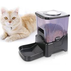 MicroMall High Capacity LCD Display Electronic Automatic Pet Feeder Dispenser for Dog Cat --- Please be sure to check out this awesome product. (This is an affiliate link and I receive a commission for the sales)