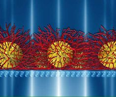 Apr 14, 2016 Nanoparticles are known to self-assemble at the air-water interface into large two-dimensional (2D) sheets.   Researchers at Argonne National Laboratory, the University of Chicago and the University of Missouri recently discovered that an organic coating on the nanoparticles differs slightly between the two sides of the membrane.