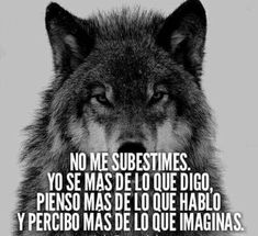 Karma Frases, Karma Quotes, Life Quotes, Motivational Phrases, Inspirational Quotes, Quotes En Espanol, Wolf Quotes, Anime Wolf, Funny Babies