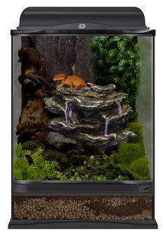 36 Best Terrarium Decor Images Reptile Terrarium Terrarium Ideas