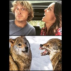 Sometimes life imitates art... Eric Christian Olsen And Daniela Ruah