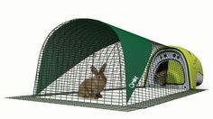 Rabbit Eglu Green with Run http://rabbithutchzone.com/rabbit-eglu-green-run/ #rabbit hutch #eglu in green