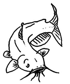 Channel Catfish Coloring Pages : Best Place to Color Colouring Pages, Coloring Pages For Kids, Catfish Images, Channel Catfish, Online Coloring, Line Drawing, Painted Rocks, Wood Cookie, Rock Painting
