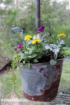 GypsyFarmGirl: A Bottomless Rusty Flower Bucket ~ a rusty bucket and and old spring Rustic Gardens, Outdoor Gardens, Diy Garden Decor, Garden Art, Garden Design, Container Plants, Container Gardening, Vegetable Gardening, Hanging Flower Baskets