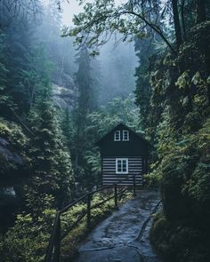 Wonderful Outdoor and Landscape Photography by Daniel Schumacher Forest Cabin, Forest House, Lofts, Landscape Photography, Nature Photography, Cabin In The Woods, Tiny House Cabin, Tiny Houses, Cabins And Cottages