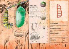 Review: Van bijenflat tot vogelvilla | Klas van juf Linda
