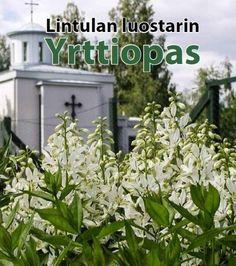 Lintulan luostarin yrttiopas / teksti: nunna Nektaria.