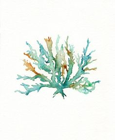 No 2 Sea Coral  / Teal / Aqua / Yellow Ochre / by kellybermudez, $20.00