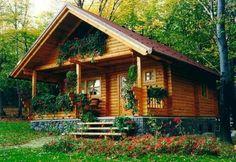 Sweet little cabin