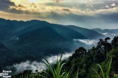 Sun sets with the mists hanging low, in Bwindi Impenerable Forest National Park in Uganda.