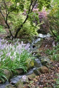 I want the sound of this stream trickling through my secret garden