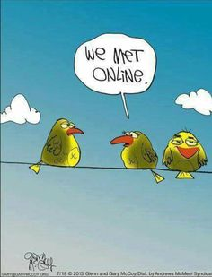 We met online Cartoon Jokes, Funny Cartoons, Funny Comics, Funny Puns, Hilarious, Bird Puns, Humor Grafico, Funny Animals, Laughter