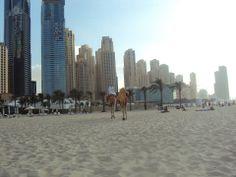JBR-Dubai ;)