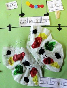 Make this craft and learn about the life cycle of a butterfly.