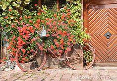 bicicletas retro com flores - Pesquisa Google