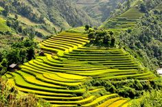 The Heart-Stopping Beauty of The Mu Cang Chai District in Vietnam
