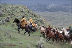 """Hell's A Roarin' Horse Drive, Gardiner, MT by Jean Modesette"