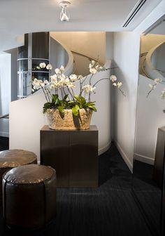 MICHAEL DAWKINS Interior Design Style #bestinteriordesignprojects #Topinteriordesigners