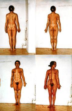 Anatomying ........................................ Ana Mendieta (1973-75)