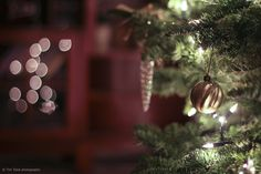 Christmas | Flickr - Photo Sharing!