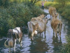 Jersey cow painting – Cow Art and More