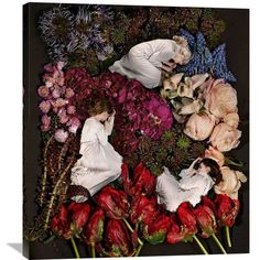 "Global Gallery 'Sleeping in Flowers' by James Hall Photographic Print on Wrapped Canvas Size: 36"" H x 31.7"" W x 1.5"" D"