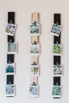 A cheap and clever way to display small photos. /explore/DIY/