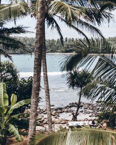 Sri Lanka Hiriketiya Surf Home Stay - Mikuta - #mikutatravels