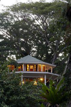 Travel and stay in this amazing Tree House in Fiji, Honeymoon Bure, Koro Sun Resort