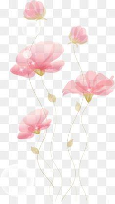 Ручная роспись цветы White Rose Png, Picture Borders, Transparent Flowers, Photo Frame Design, Feather Painting, Flower Invitation, Flower Clipart, Flower Frame, Watercolor Illustration
