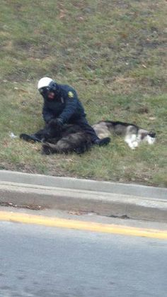 The officer stayed in the cold with the clearly exhausted dogs, keeping them company while they waited for members of the local animal shelter to arrive.