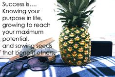 Success is…. Knowing your purpose in life, growing to reach your maximum potential, and sowing seeds that benefit others. #FridayQuote #HappyFriday