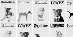 dog as fonts | grafisches büro