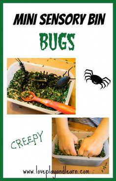 Mini Sensory Bin Bugs