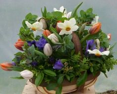Trug of spring flowers, tulips, anemones and narcissi