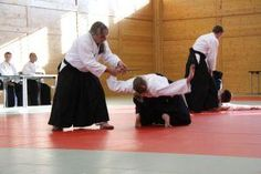 ÖAV Aikido Lehrgang mit Danpüfungen im Budokan Wels im Mai 2012