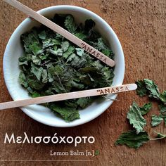 Lemon Balm, Parsley, The Balm, Herbs, Food, Essen, Herb, Meals, Yemek