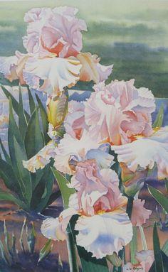 Iris Flower Painting Print, Watercolor Flowers, Watercolor FlowerArt Prints - Liz Rogers