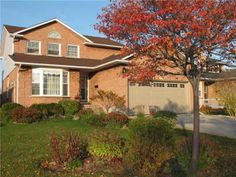 Autumn brings fascinating colors to your home with trees and shrubs with leaves.