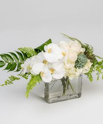 A serene collection of unique white and green blooms, including orchids, hydrangea and succulents, is designed in our envelope vase and availabel for delivery in Philadelphia, PA and the surrounding areas.