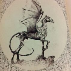 Thestral <3