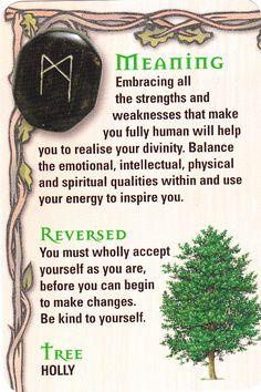 Reading the rune stones. Wicca Runes, Norse Runes, Viking Runes, Norse Mythology, Wiccan, Wicca Witchcraft, Rune Divination, Celtic Runes, Elder Futhark Runes