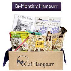Subscription Options - Cat Hampurr