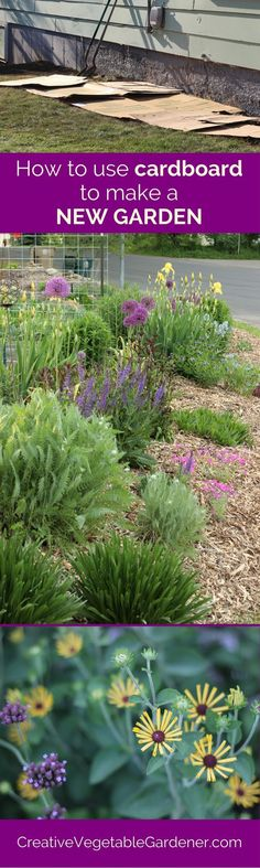 Don't mess with removing grass, there's a much easier way to create new garden beds for spring!