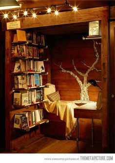 A little reading nook…    When I have a house, I'm going to turn a closet into a nook like this.